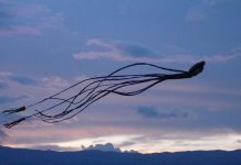 August is the month of wind with the kite festival in Villa de Leyva.