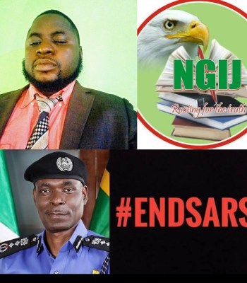 #EndSARS: Complete Police Reform Is The Way To Go - NGIJ President ~Thecitypulsenews