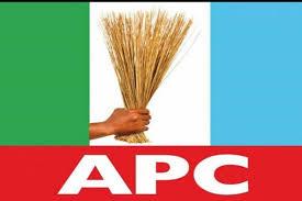 APC Lagos LG/LCDA Primaries, Result Released Is A Farce