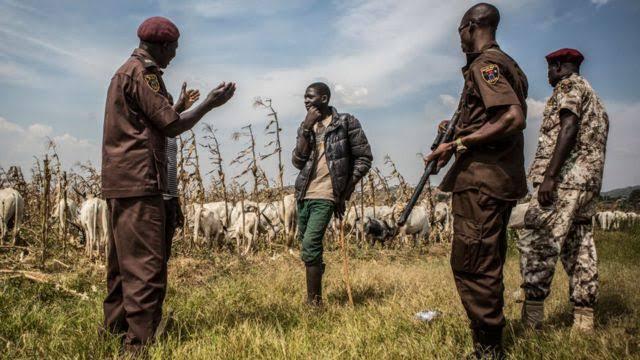 Over 150 Bandits Invade President Buhari's Home State, Kastina