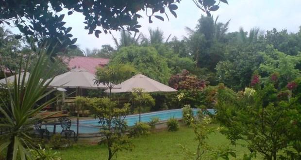 The Coffee Farm House
