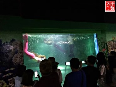 Mermaid Show at the Boracay Oceanarium