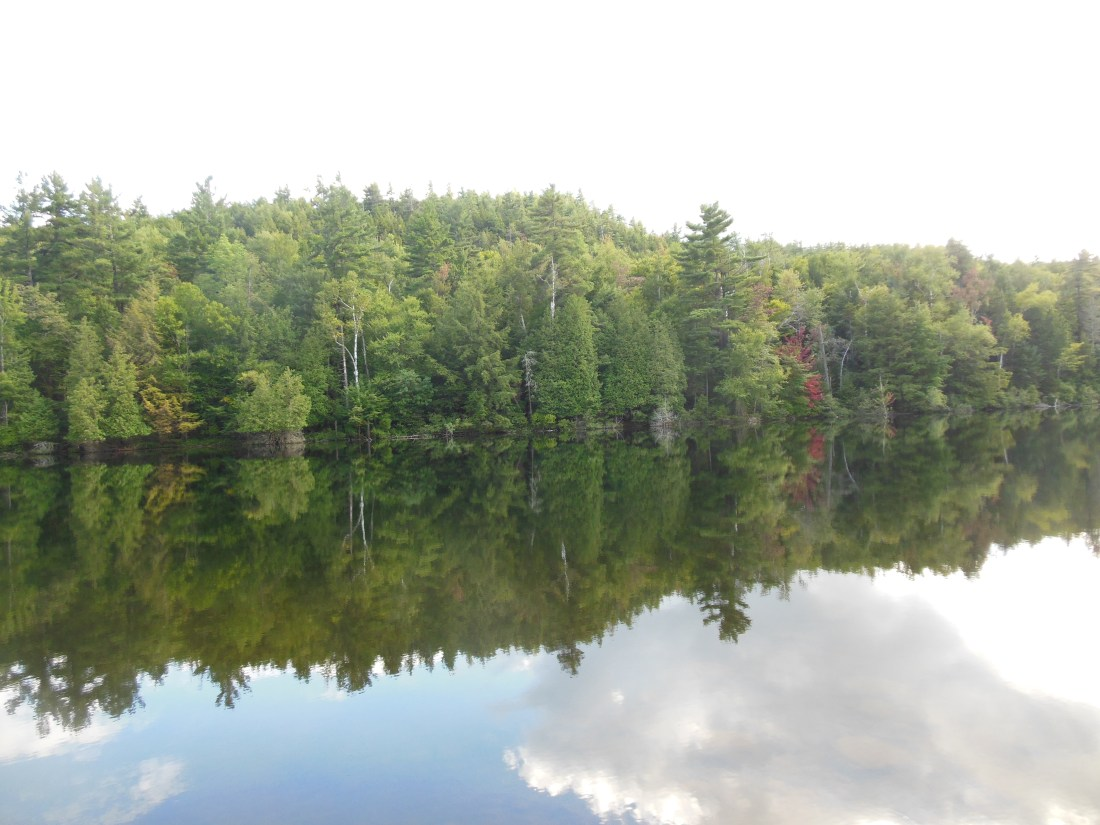 adirondackpondreflection