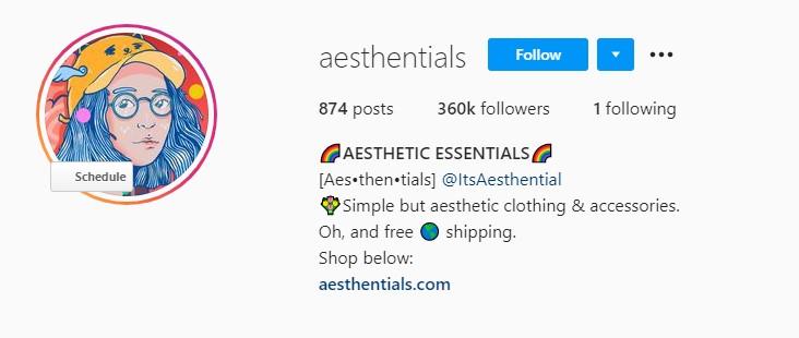 Aesthentials Instagram homepage