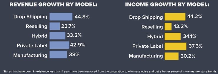 Dropshipping income and revenue growth