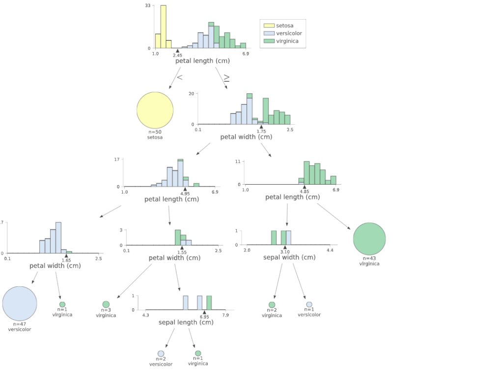 visualize a decision tree