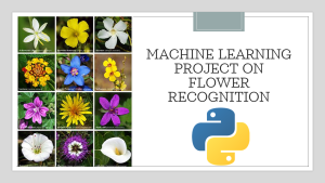 Flower Recognition with Python