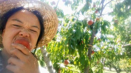 kaitlin_peach