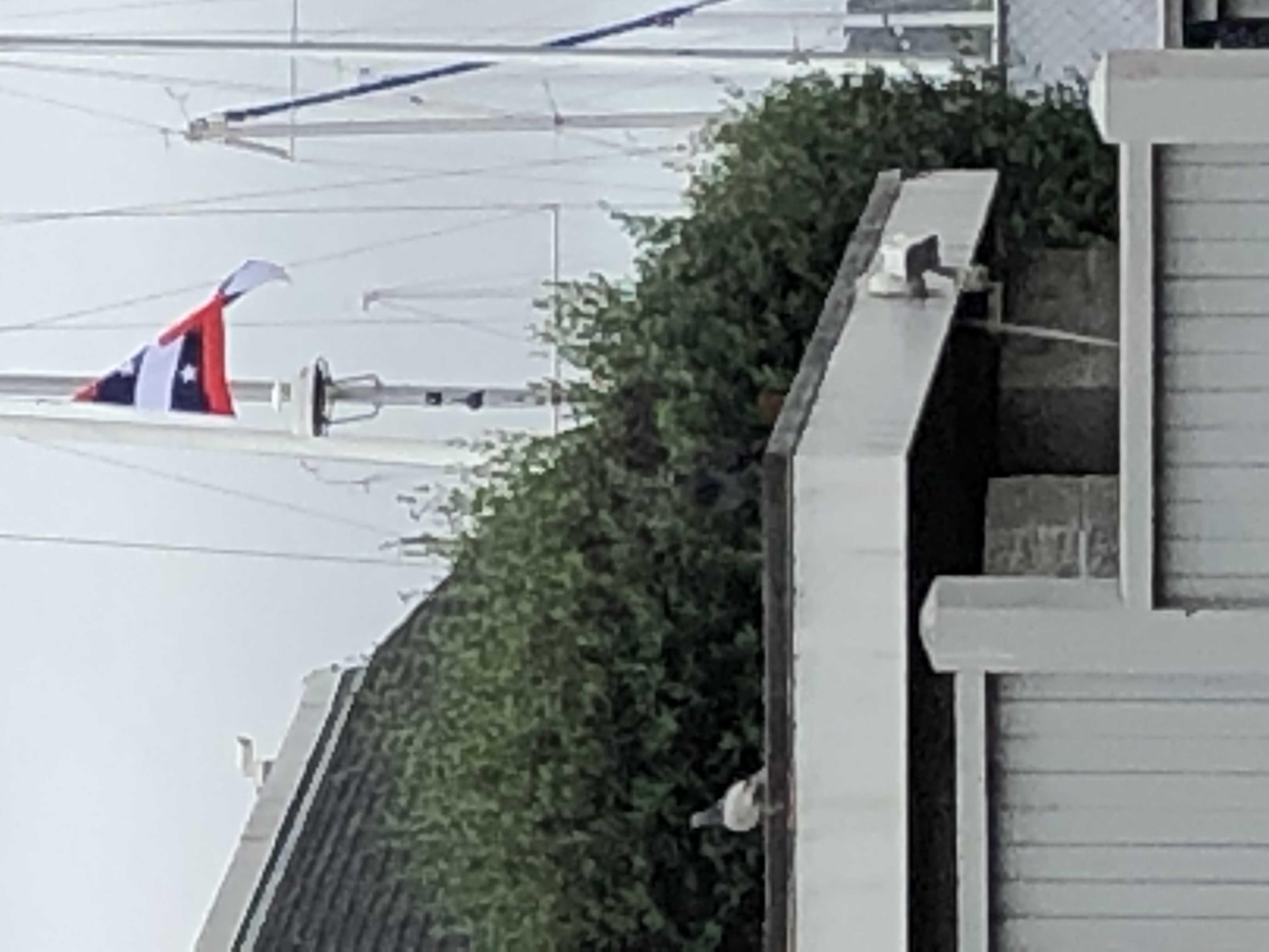 SFYC Flag