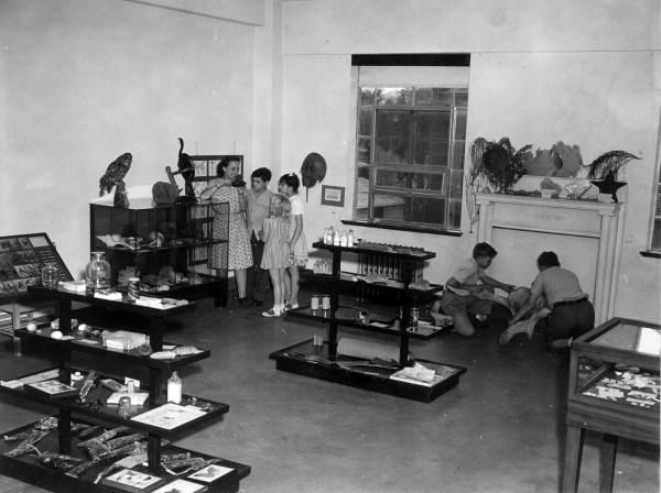 Jacksonville Children's Museum exhibits