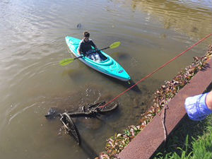 One of four bicycles fished out of Wesley Lake during a cleanup over the weekend.