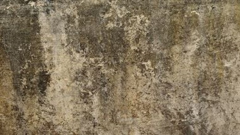 Benefits Of Sealing Your Concrete Floor