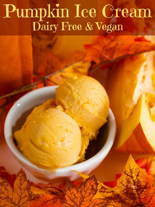 Coconut Milk Pumpkin Ice Cream
