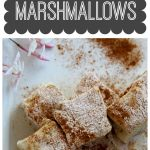 Cinnamon Covered Paleo Marshmallows (with chocolate dipped option) from The Coconut Mama