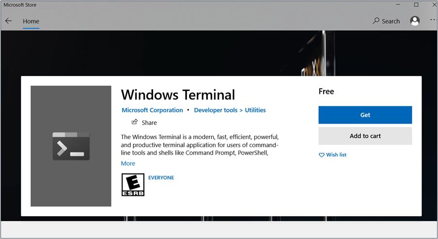 Microsoft Store: Install Windows Terminal
