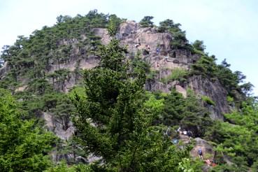 Beehive Ladder Trail