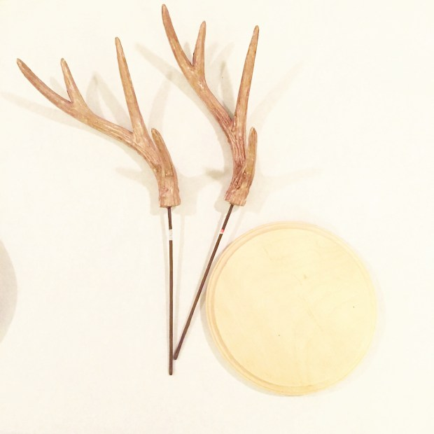 Antlers and Wood Disk