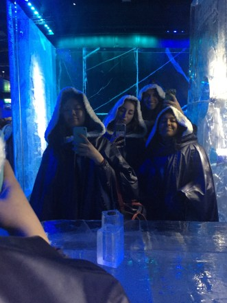 Who wouldn't want to go to an ice bar in Stockholm?