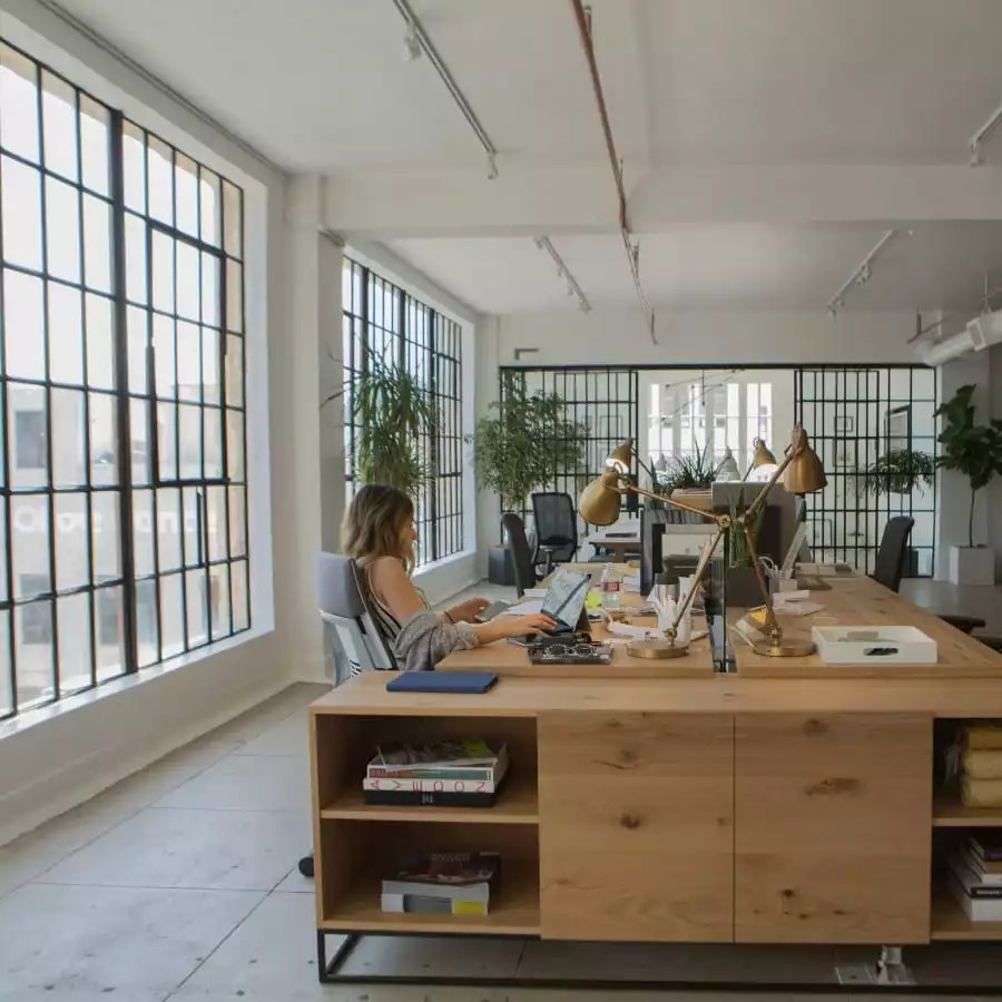 People in Shared Office Space in LA - The Collection
