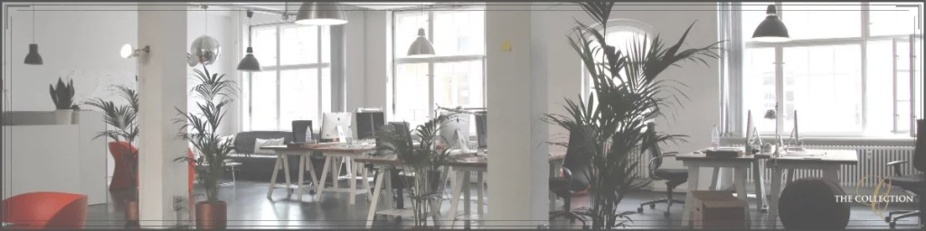 What are the Advantages of Renting an Office Space? - Collection