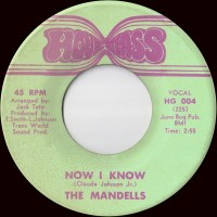 The Mandells-Now I Know / Don't Turn Your Back On Me