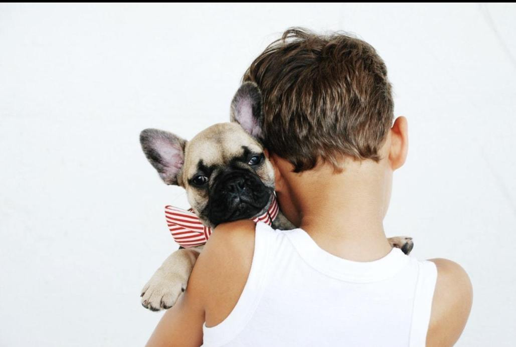 bambino e cucciolo bulldog francese abbracciati addestramento cucciol