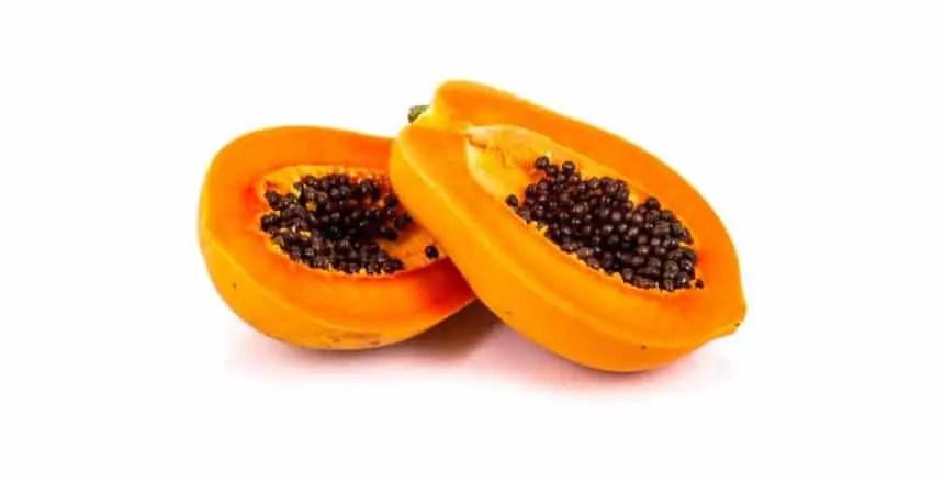 Papapaya ai cani - frutta ai cani - quale frutta possono mangiare i cani