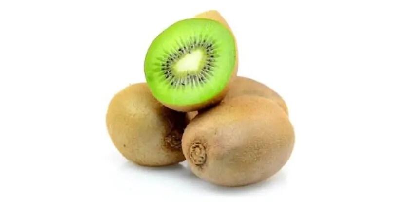 kiwi ai cani - frutta ai cani - quale frutta possono mangiare i cani