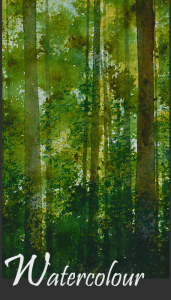 spring-in-the-woods-1front-page