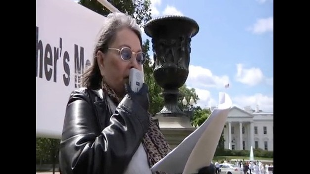 Roseanne Barr announces presidential run for the Green Party ticket, or the Green Tea Party ticket?