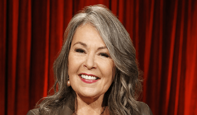 Roseanne Barr on judging the top 100 comedians invited to NBC's Last Comic Standing in 2014