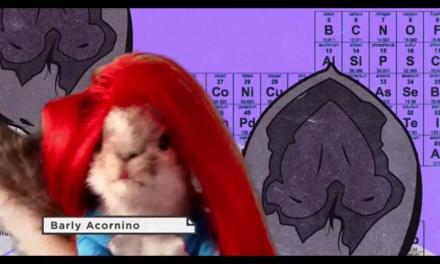 Two Squirrel Code spoofs of Girl Code are better than one? Nuts!