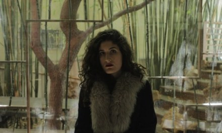 Art, commerce and somewhere in between lies The Characters of Kate Berlant on Netflix