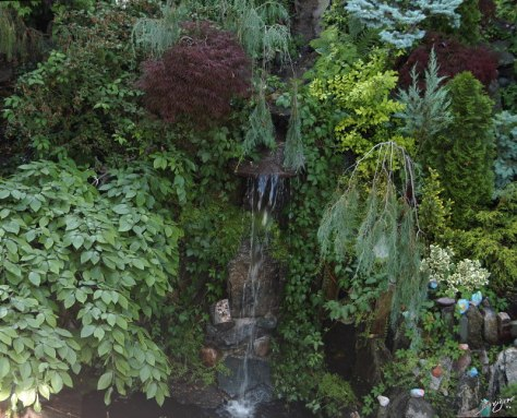 garden, waterfall, The Common Vein, Ashley Davidoff MD
