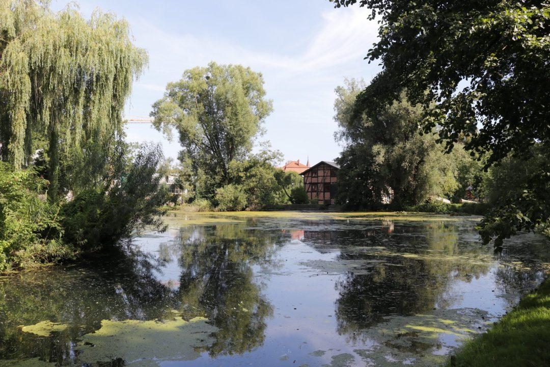 Parc-Oliwa-1