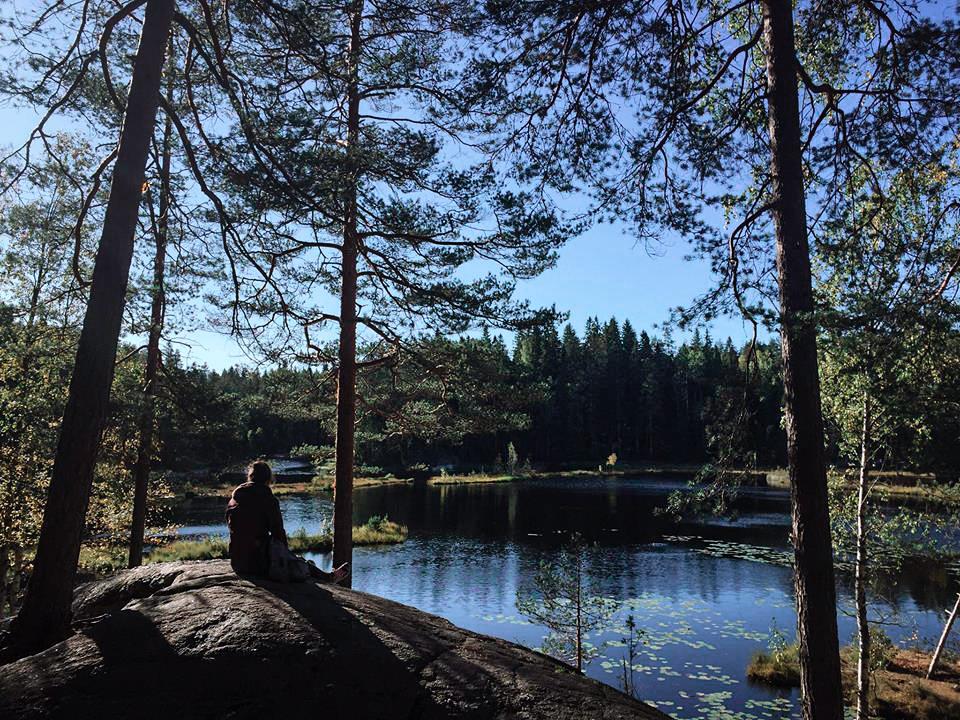 Nuuksio-National-park-finlande