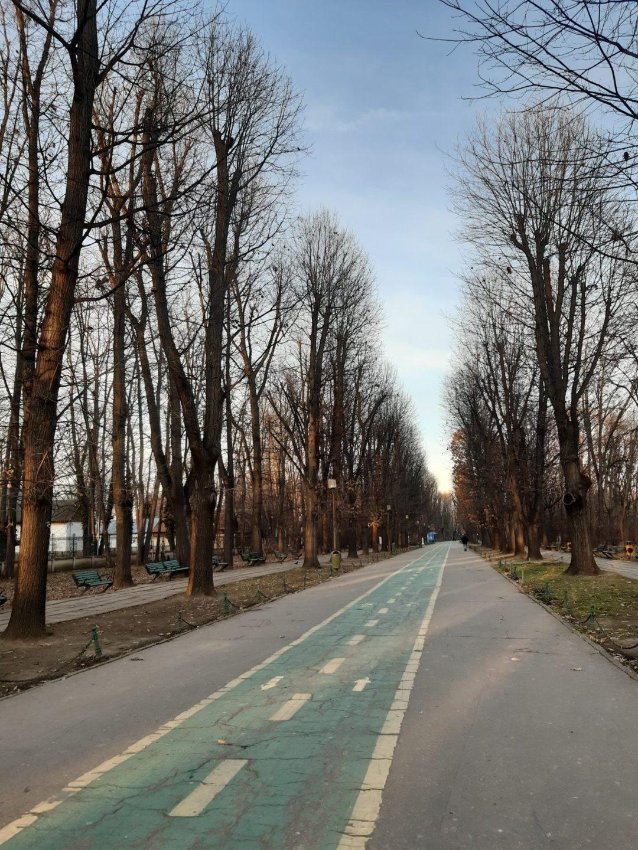 Parc-Herăstrău