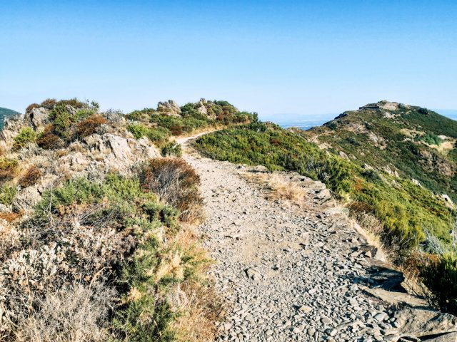 Randonnée-tour-de-la-Madeloc-Collioure