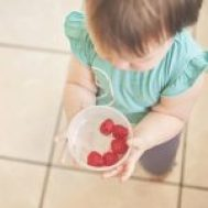 Child who eats berries intuitively