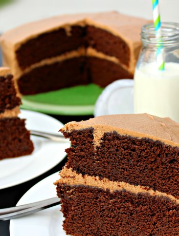 Coffee Lover's Chocolate Mocha Cake ~ The Complete Savorist