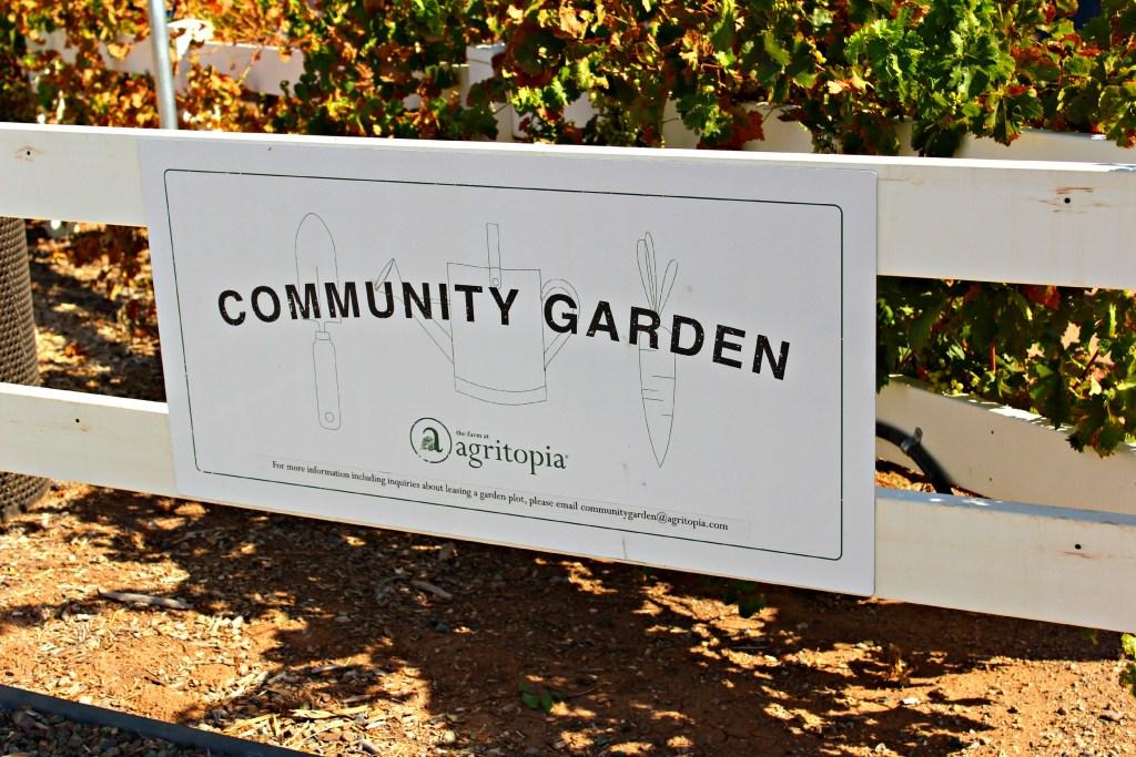 Agritopia ~ The Complete Savorist #FoodiesInPhoenix #myphx