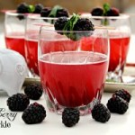 A tasty sparkling cocktail that combines Prosecco with ginger ale and blackberry sauce, making it perfect for any gathering. ~ The Complete Savorist by Michelle De La Cerda