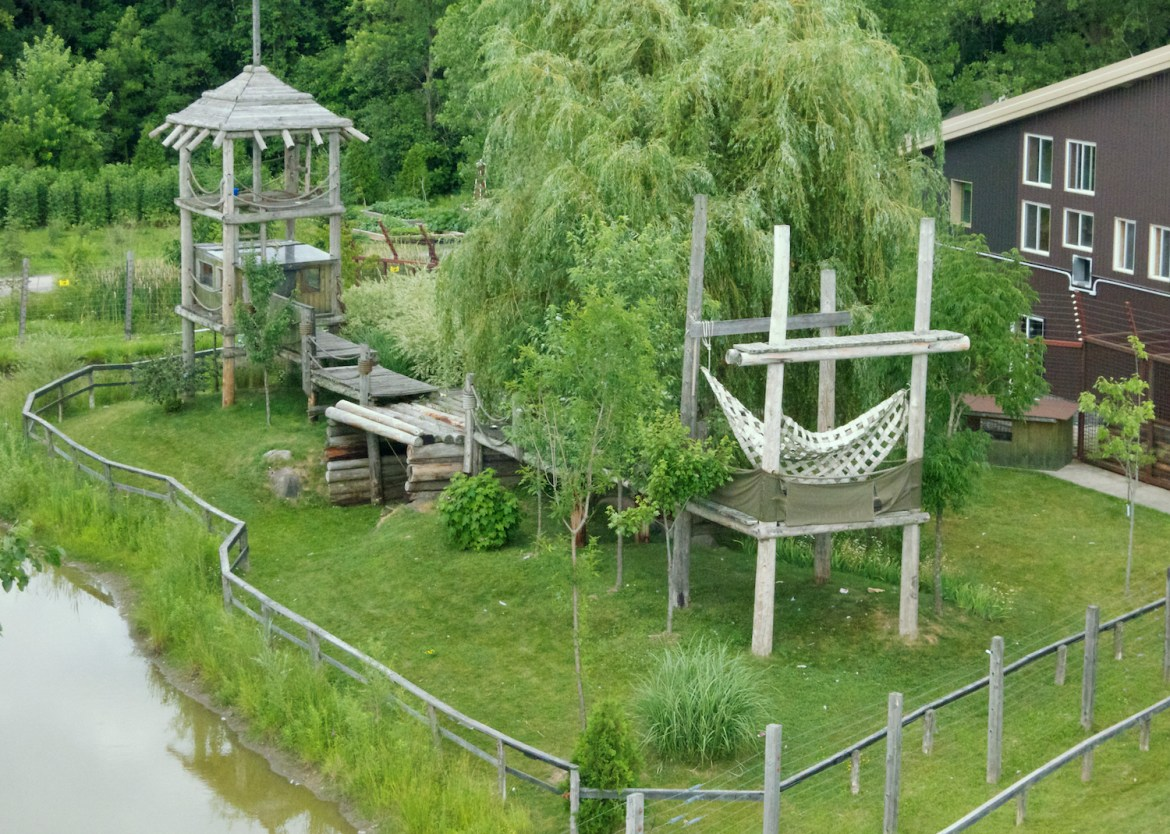 An aerial view of a segment of the sanctuary space. Photo by NJ Wight of Fauna.