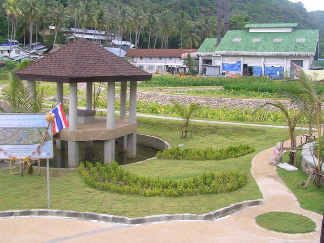There are lovely gardens on Phi Phi Don, part of the water treatment system