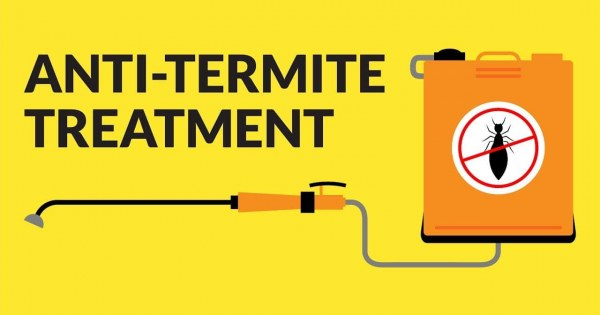 Anti Termite Treatment Types Chemicals Prevention And Safety