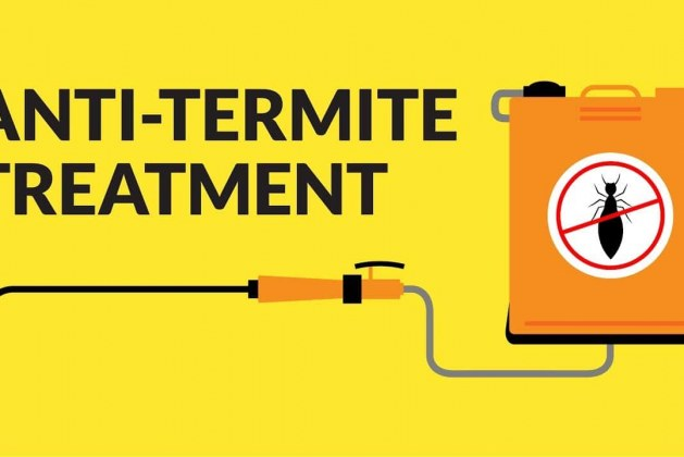 Anti-Termite Treatment – Types, Chemicals, Prevention and Safety
