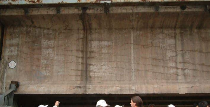 Affect of Alkali Aggregate Reaction on Railway Bridge