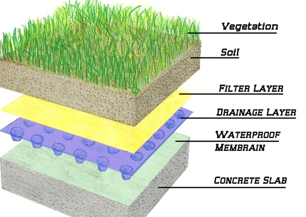 Components of Green Roofs