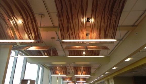 Acoustical Ceiling Arrangement