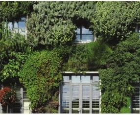 Facade Integrated Living Wall
